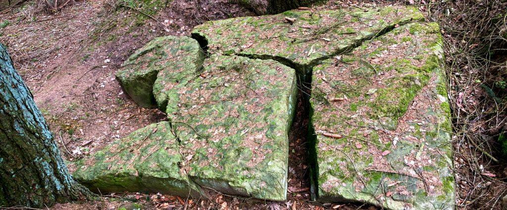 Gespaltener Felsblock im Wald