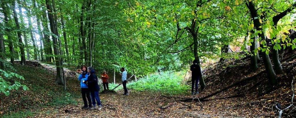 Waldbaden, eine Gruppe erkundet den Wald